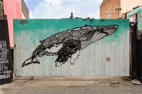Whale. Shoreditch. Lily Mixe